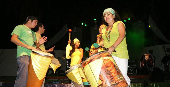 Carnaval-Vicuña