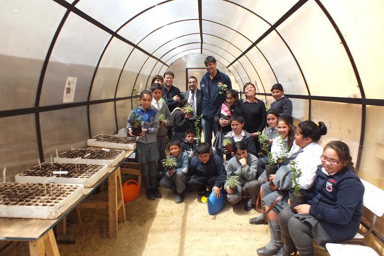En caleta hornos alumnos crean vivero con semillas de - Vivero la rosa del norte ...