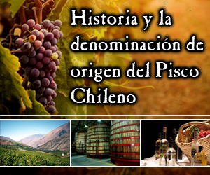 banner pisco lateral