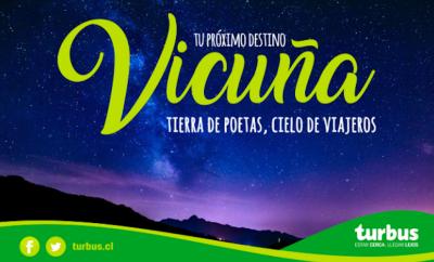 tur-bus-vicuna