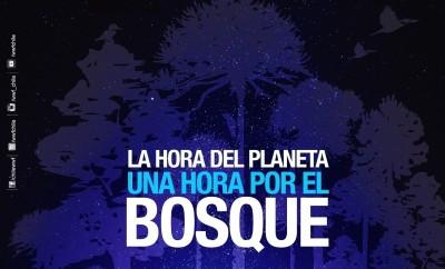 Afiche hora planeta 2017