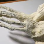 Momia-Nazca-Dedos2