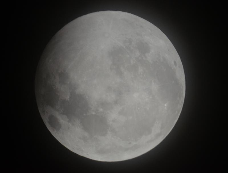 Eclipse Lunar 2019 (9)
