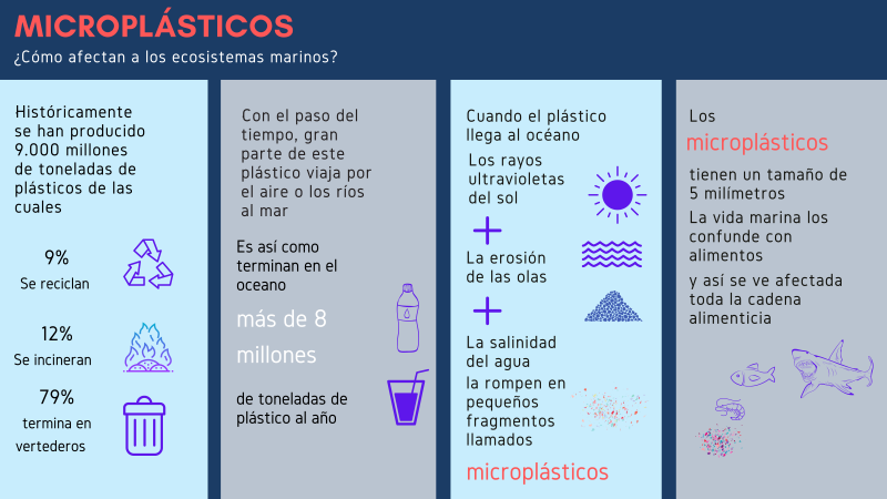 Imagen 1. Microplásticos