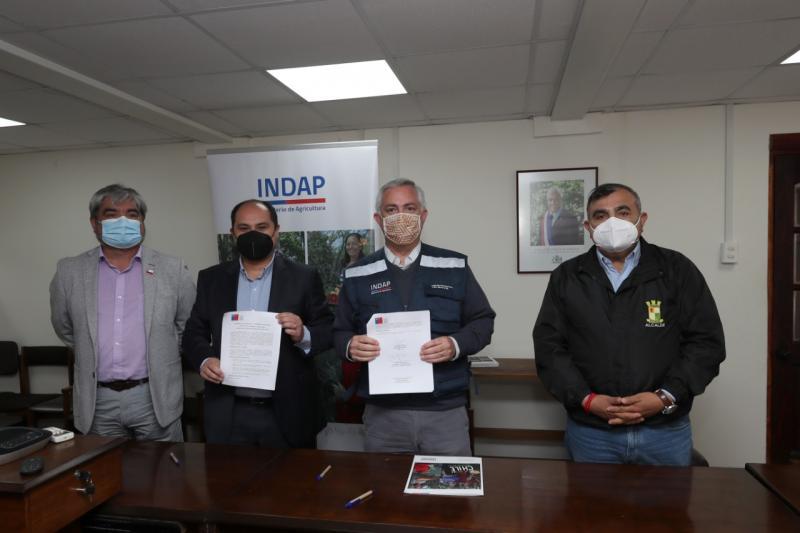 Indap-municipios