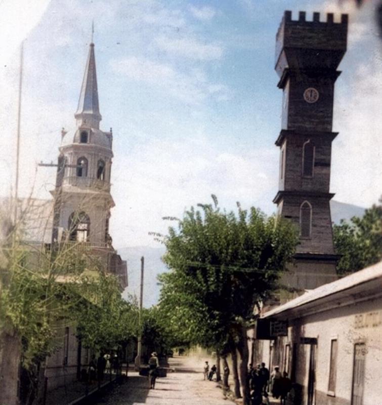 Vicuña-Antigua2