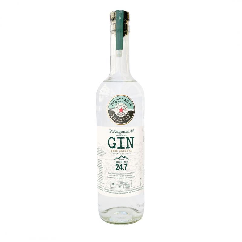 Gin-Cerveza2
