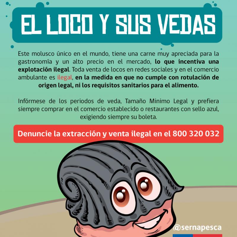 VEDA-DEL-LOCO-2021-RRSS-04