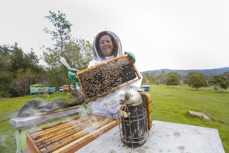 Día de la Miel 6